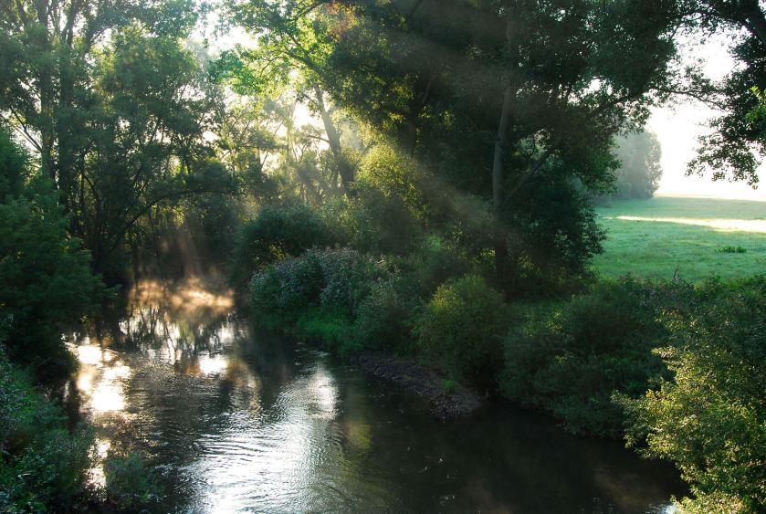 Unten am Fluss1